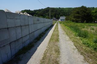 DSC03044蛇の道は.jpg