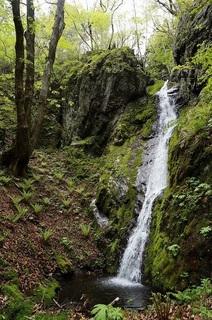 矢立の滝�J.jpg